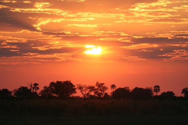 Sunrise over the Okavango Delta. Photo by: Tiffany Roufs.