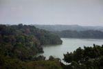 Lake Gatun and Barro Colorado Island