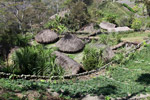 Dani desa di New Guinea