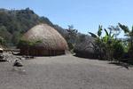Rumput gubuk di dataran tinggi New Guinea