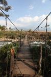 Hanging jembatan 'Wamena dekat