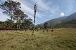 Watch tower in a Dani village, New Guinea
