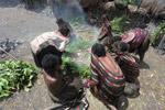 Dani women cooking sweet potato [papua_0613]