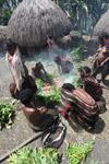 Tribal Dani women cooking sweet potato [papua_0616]