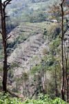 Highland lanskap pertanian dan pondok di New Guinea