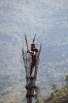 Kayo, atau mencari, dalam pakaian tradisional di atas menara jam