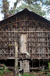 Rumah Kaki Seribu (thousand feet house), a traditional hut in the highlands of West Papua, New Guinea [west-papua_5264]