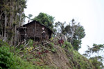 Rumah Kaki Seribu (thousand feet house), a traditional hut in the highlands of West Papua, New Guinea