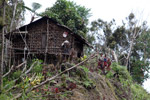 Rumah Kaki Seribu (thousand feet house), a traditional hut in the highlands of West Papua, New Guinea [west-papua_5274]