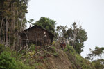 Rumah Kaki Seribu (thousand feet house), a traditional hut in the highlands of West Papua, New Guinea [west-papua_5276]