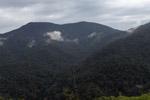 Arfak mountains [west-papua_6005]