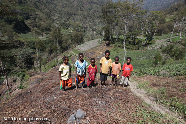 Children stand next to sweet potato plot in Indonesian Papua. Land grabbing often severs people from their traditional lands. Photo by: Rhett A. Butler.
