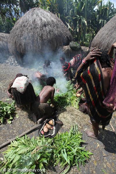 Tribal Dani women cooking sweet potato [papua_0598]