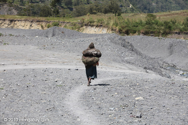 Papua woman carrying a load on her back