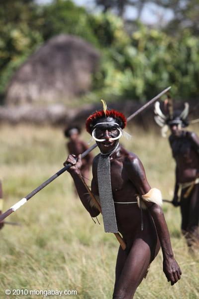 Dani men in ceremonial battle [papua_5475]