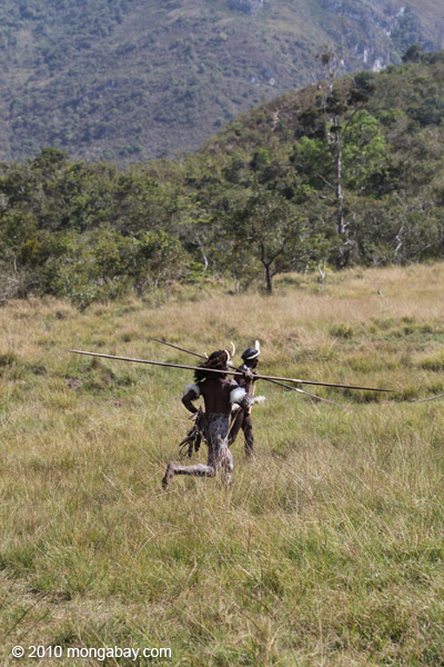 Dani men in ceremonial battle [papua_5496]