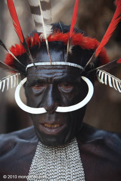 Dani man in New Guinea with hog bone in his nose [papua_5721]