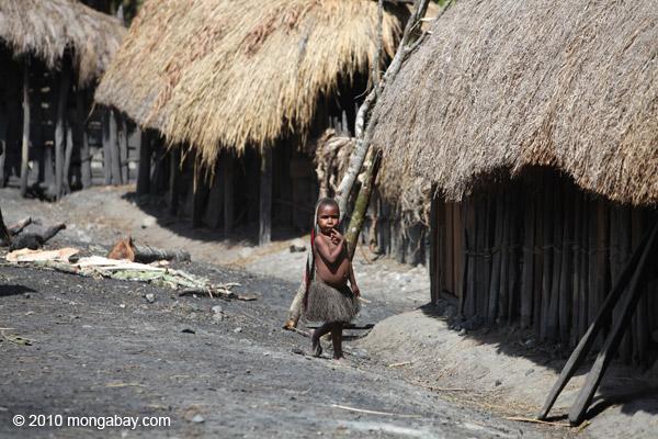 Dani child in a Papuan village