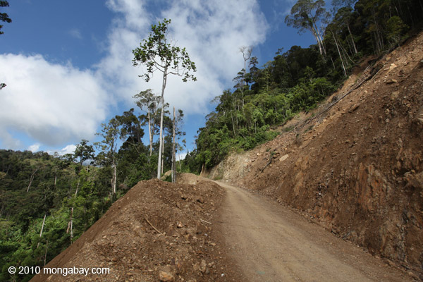 Road in Indonesian New Guinea