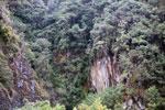 Manu cliff