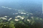 Mosaic deforestation near the Transoceanic highway