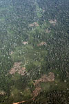 Aerial picture of mosaic deforestation in the Peruvian Amazon