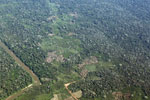Aerial view of deforestation along a river in the Peruvian Amazon