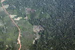 Deforestation in the Peruvian Amazon