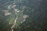 Aerial photo of deforestation in the Peruvian Amazon