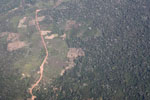 Aerial picture of deforestation in the Peruvian Amazon