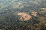 mosaic deforestation in the Peruvian Amazon