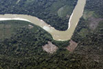 Forest clearing along an Amazon tributary
