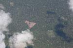 Deforestation for cattle ranching