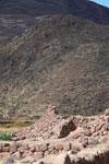 Ancient Inca agricultural terraces