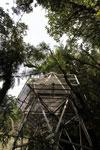 Manuq p'uyu chaca canopy tower