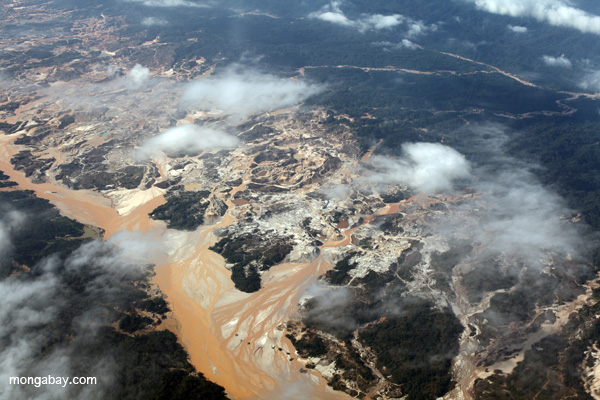 Gold mining in the Peruvian Amazon