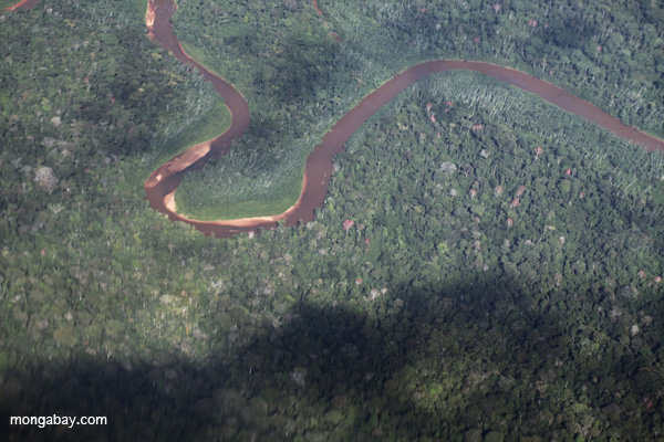 Amazon rainforest river in Peru