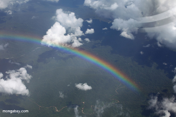 Rainbow over the Amazon rainforest