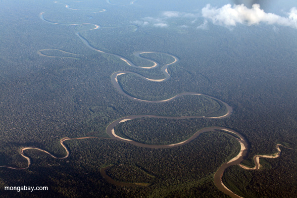 Remote river in the Andes-Amazon foothills