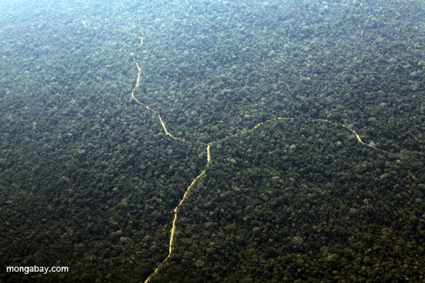 A logging road transects Peruvian rainforest. Photo by Rhett A. Butler.