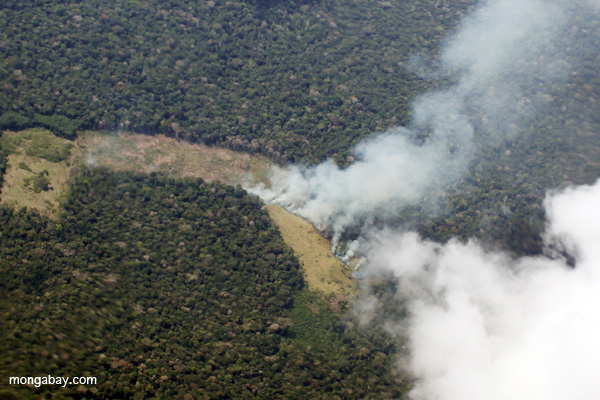 Fire in the Peruvian Amazon. Photo by Rhett A. Butler.