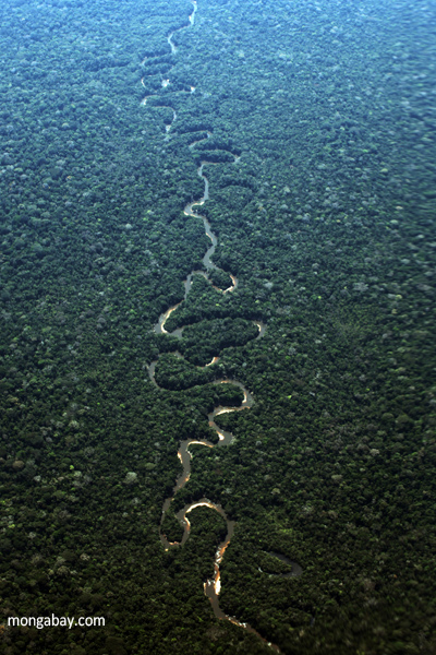 the background information on the amazon rainforest and other rainforests Other ways to give donate now donate renew press enter to find out the answers to these questions and more as you check out these interesting rainforest facts one-fifth of the world's fresh water is found in the amazon basin rainforests are critical in maintaining the earth's.