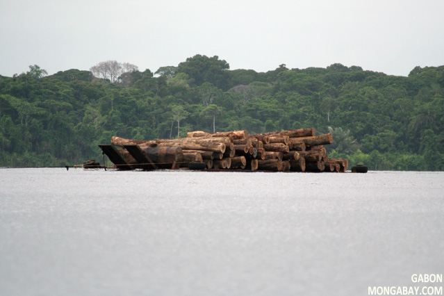 Timber being transported in Gabon