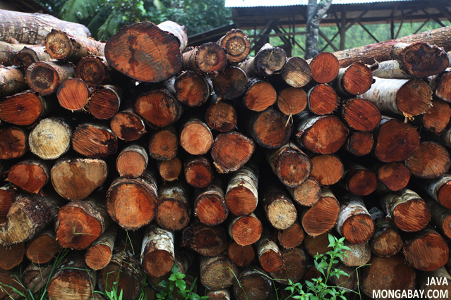Logs piled up at a sawmill in Java