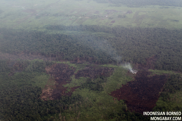 Aerial view of sections of rainforest felled for subsistence agriculture
