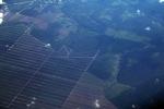 Oil palm on peatland -- sabah_0057