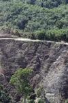Deforestation -- sabah_0293