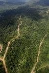 Aerial view suatu HPH