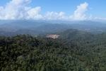 Deforestation for oil palm -- sabah_0717