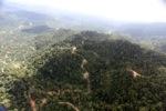 Logged forest -- sabah_0821